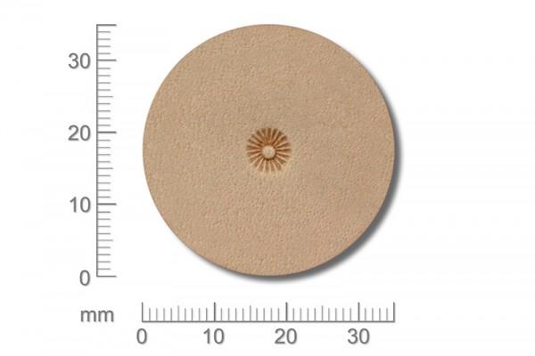 Punziereisen / Prägewerkzeug / Lederstempel S349 ( D V-01 )